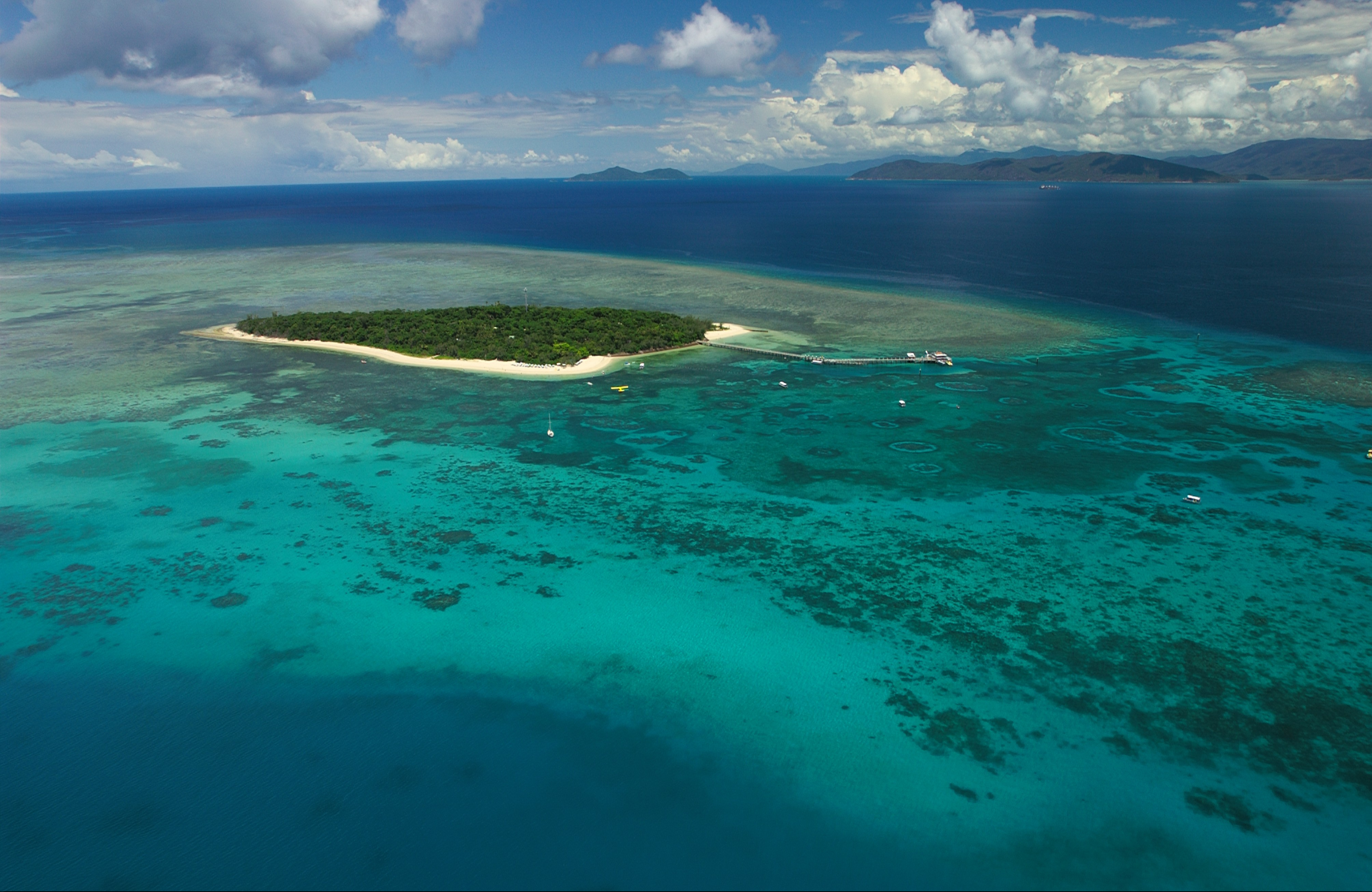 Reef Island
